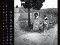 Calendrier PIRELLI 2014 - Edition Spéciale 50 ans